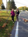 Anna Jaeger '15 and Mira Khanna '15 walk dogs the Rome Humane Society.