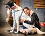 Molly Lazio '14 hugs Snickers during Paws to Relax on April 27.