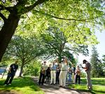 Terry Hawkridge describes a Pin Oak on campus.
