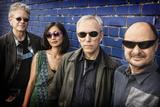 The Kronos Quartet.