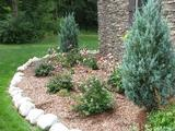 Landscaping by Mike Mahanna, the January Arboretum speaker.
