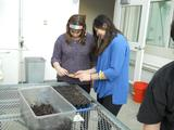 COOP Service Intern Kara Pintye-Everett '17, right, helps New Hartford High School student Alyssa plant seeds in the greenhouse.