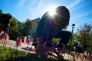 Members of Hamilton's Republicans and Democrats placed flags along Martin's Way to commemorate 9/11.
