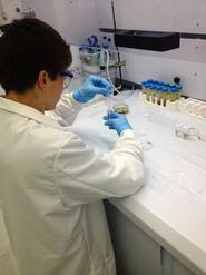 John DeGuardi '16 isolates isotopes to determine the age of a black shale sample.