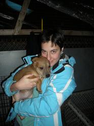 Emma Domby '11 cuddles a puppy from the Rome Humane Society.