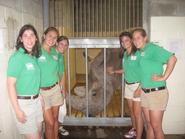 Elizabeth Bucceri '11 , second from left, with zoo interns and Southern White Rhino, Tony.