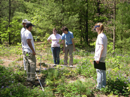 Members of the research group studying blue lupine.