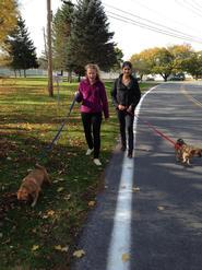 Anna Jaeger '15 and Mira Khanna '15 walk dogs the Rome Humane Society.