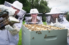 Dean of Students and beekeeper Nancy Thompson teaches students about bees during the trip: The Art and Science of Bees and Beekeeping. <br />Photo: Nancy L Ford