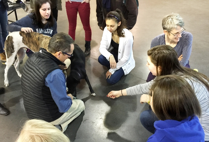 "Students ""Paws"" to Relax With Four-Legged Friends"