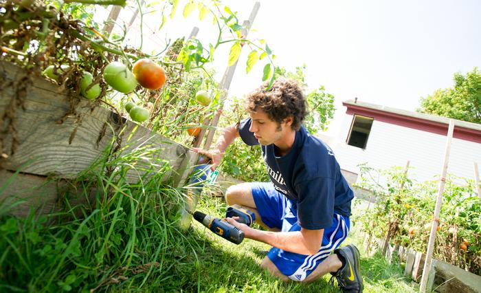 Eren Shultz '15 spruces up some above-ground vegetable beds in the garden on Linwood Place