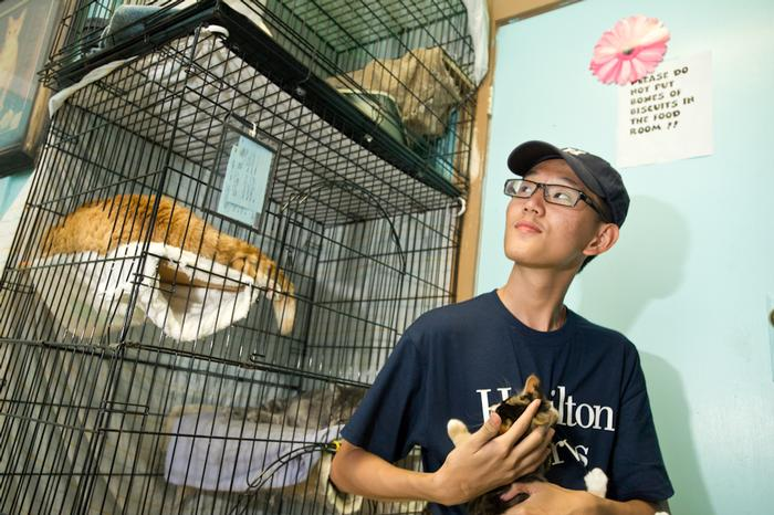 Hamilton College student Du Zhuolun plays with a cat at the Rome Humane Society as part of the annual