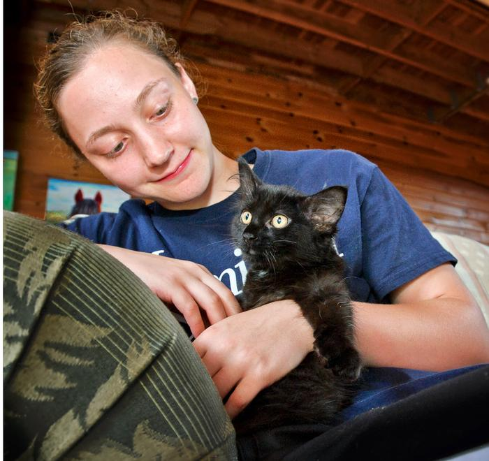 Maddie Garras pets Silky the kitten at the Spring Farm Cares. PHOTO: NANCY L. FORD