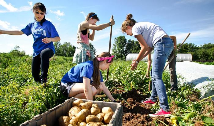 Potato harvesting for the eXploration Adventure group. PHOTO: NANCY L. FORD