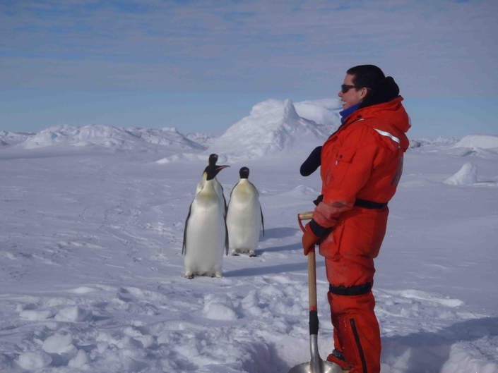 While digging a hole in the ice flow for a core, Manique realizes that a penguin has crept up on her. Photo credit: Jeremy Lucke