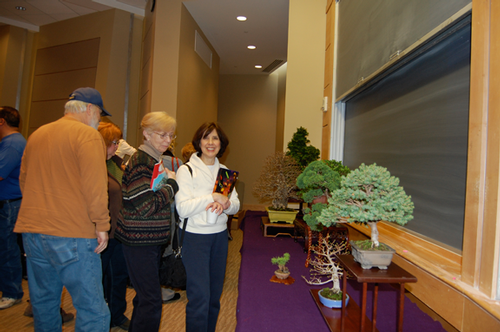 Attendees admire Bill's bonsai.