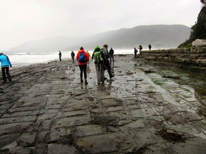 Students explore the Tessellated Pavement. Pictured from left to right: Nora Boylan '15, Becca Straw '14, Caroline Gregory '14 and Xander Kerman '14