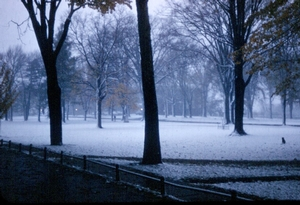 Winter 1955--a view from South dorm