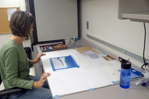 Artist Allyson shows us a piece of Antarctic inspired artwork she has just started.