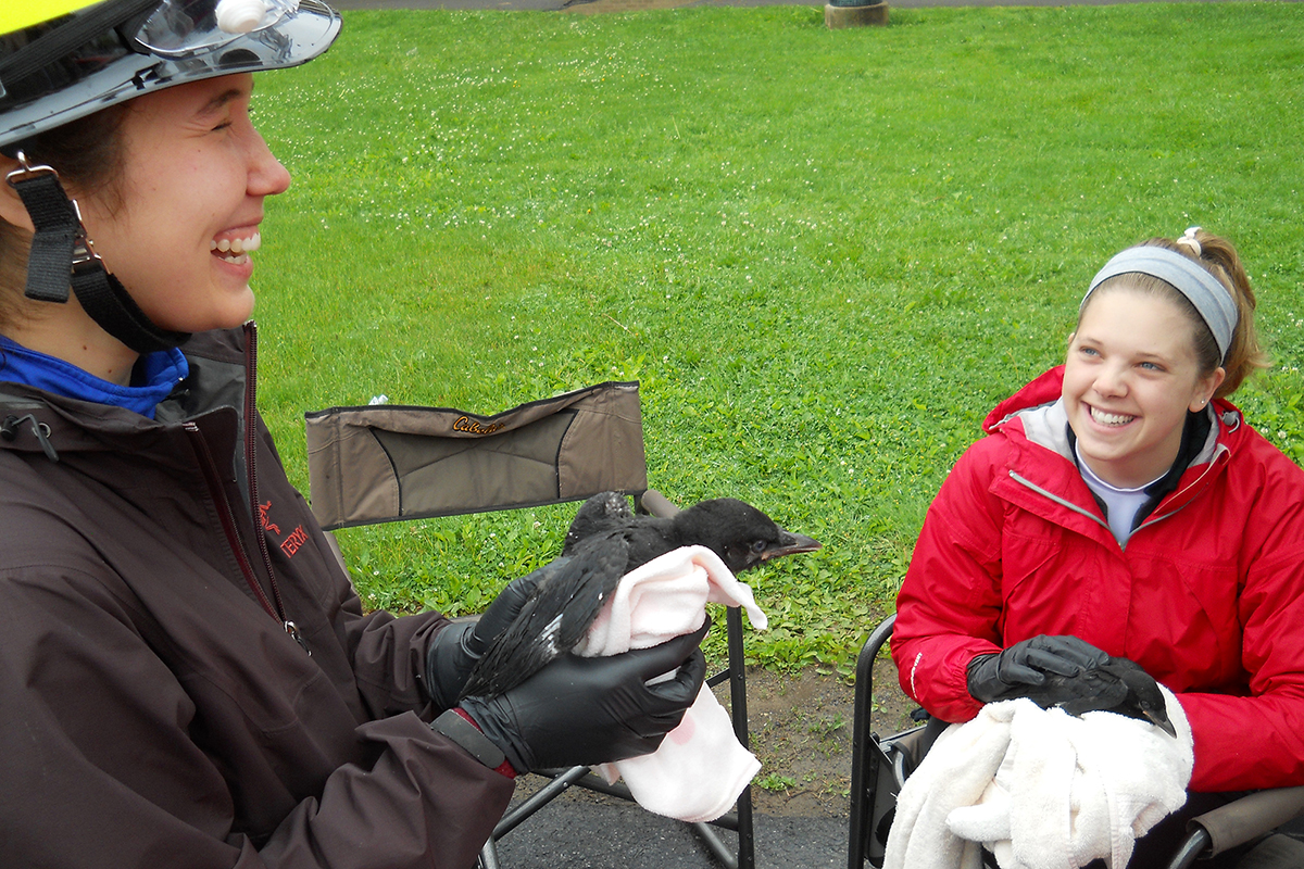 Marian Ackerman bands a crow as Jessica Sofen looks on.