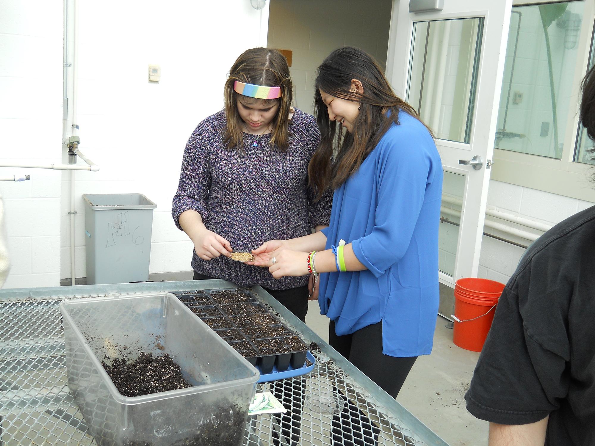 COOP Service Intern Kara Pintye-Everett '17, right, helps New Hartford High School student Alyssa plant seeds in the greenhouse.
