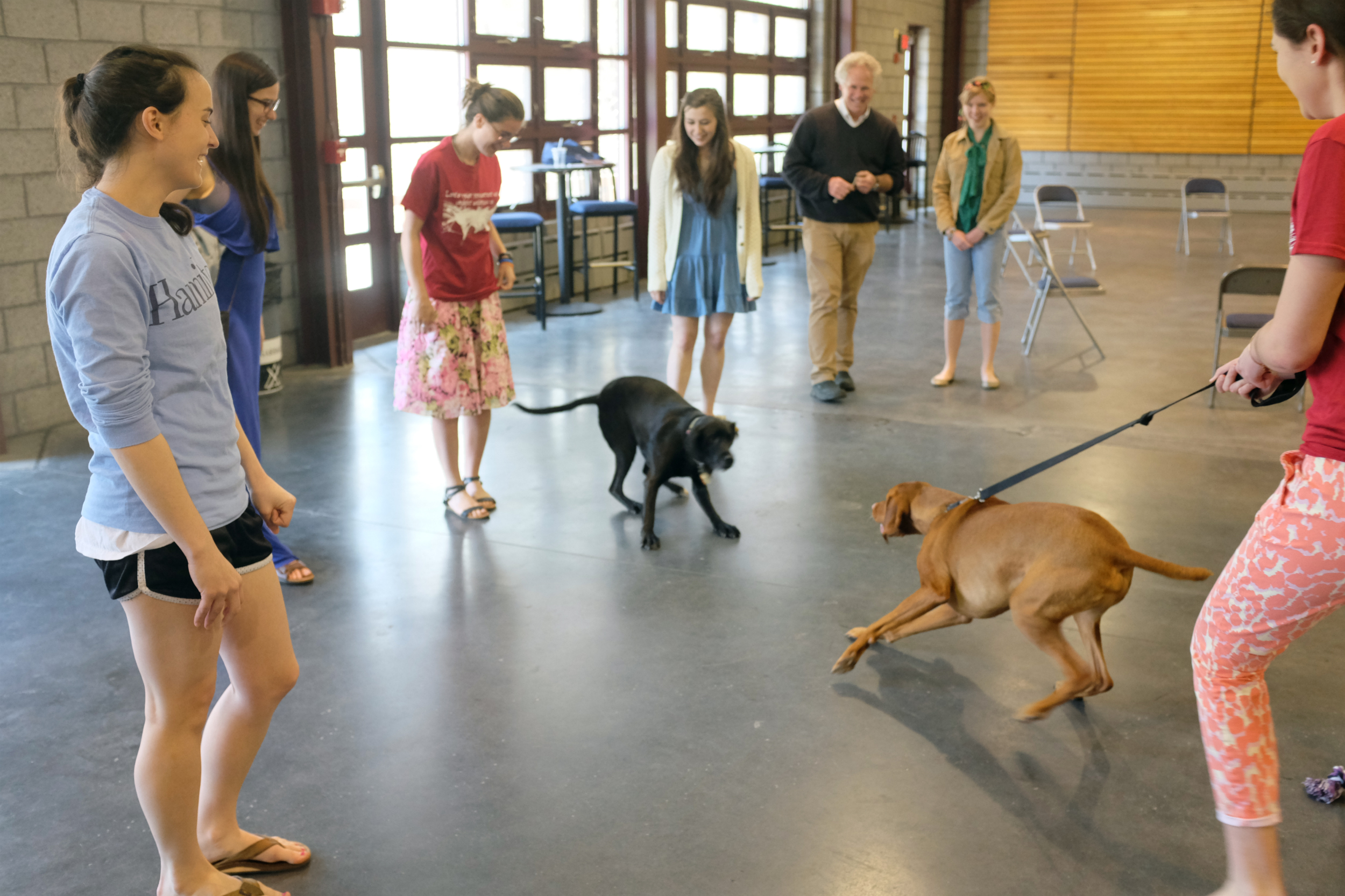Students and staff enjoyed the Paws to Relax event in the Fillius Events Barn. The dogs... not so much!
